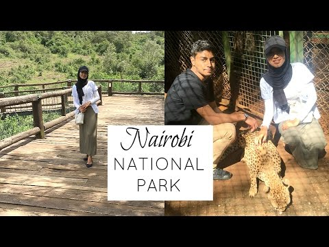 ONLY CITY IN THE WORLD WITH A NATIONAL PARK | NAIROBI, KENYA