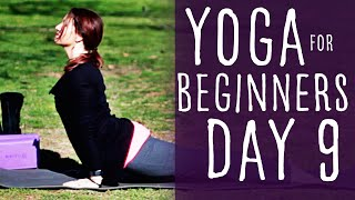 20 Minute Yoga For Beginners 30 Day Challenge Day 9 With Fightmaster Yoga