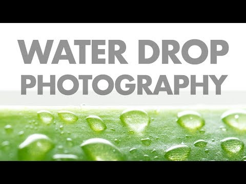 Water Drop Macro Photography Ideas