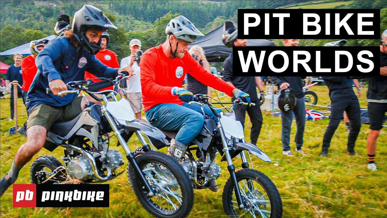 Pit Bike Racing Insanity From Red Bull Hardline 2021
