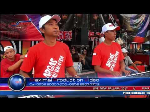 New Pallapa Live In Gunungsari Pangonan Tlogowungu-Pati ARGAS 2017