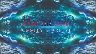Harmundi | Cooley's Breeze (Clip)