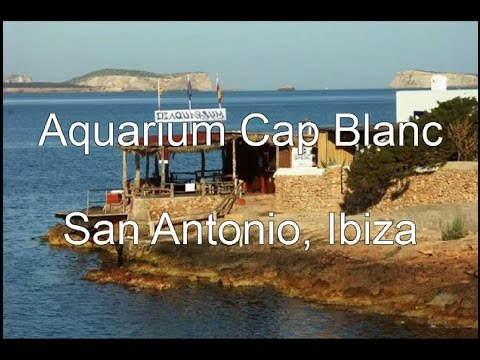 Aquarium Cap Blanc, San Antonio, Ibiza