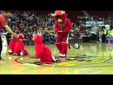Iowa Energy - Benny the Bull