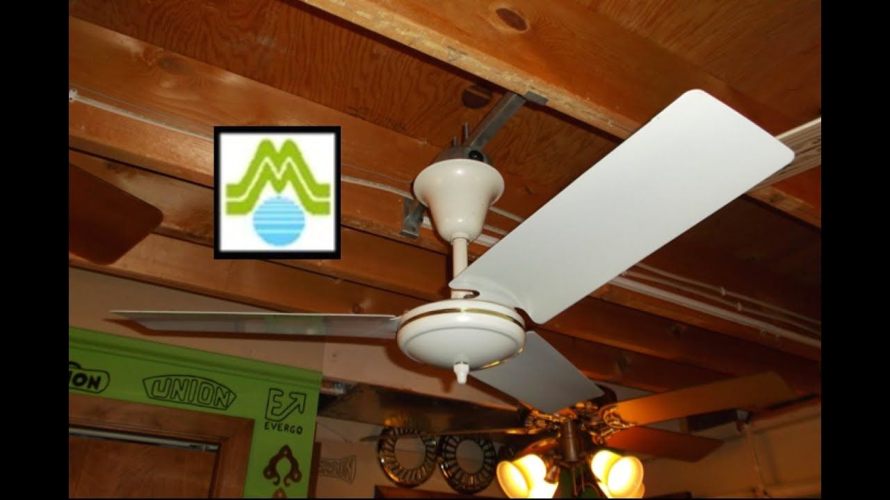 design and decor pixball tropical fan modern com l ceiling fans home