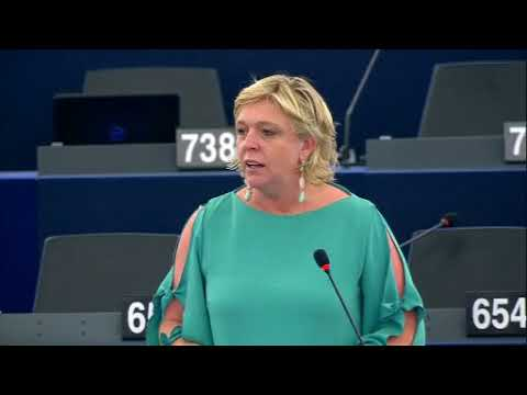 Hilde Vautmans 14 Jun 2018 plenary speech on situation of Rohingyas