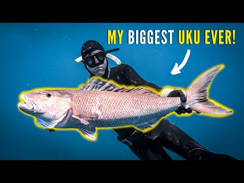 DEEP SPEARFISHING Hawaii My BIGGEST UKU!!! (Catch Clean Cook)
