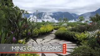 Luxury Hotels -Taiwan Island Tour
