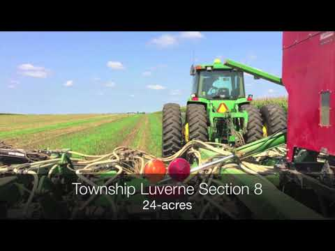 Rock County Cover Crop Project - 8 Luverne