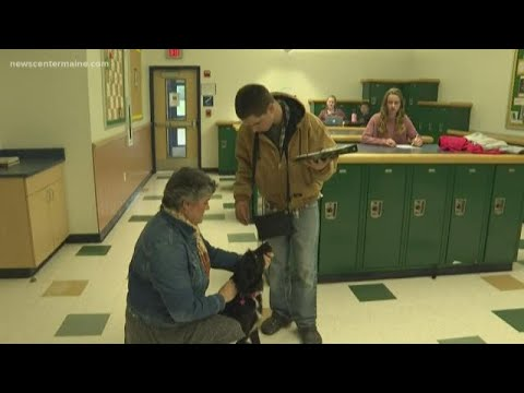 Medomak Middle School brings in therapy dog to help with students improve mental health