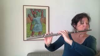 Thales Roel - Aforismas (Sarah Hornsby, flute)