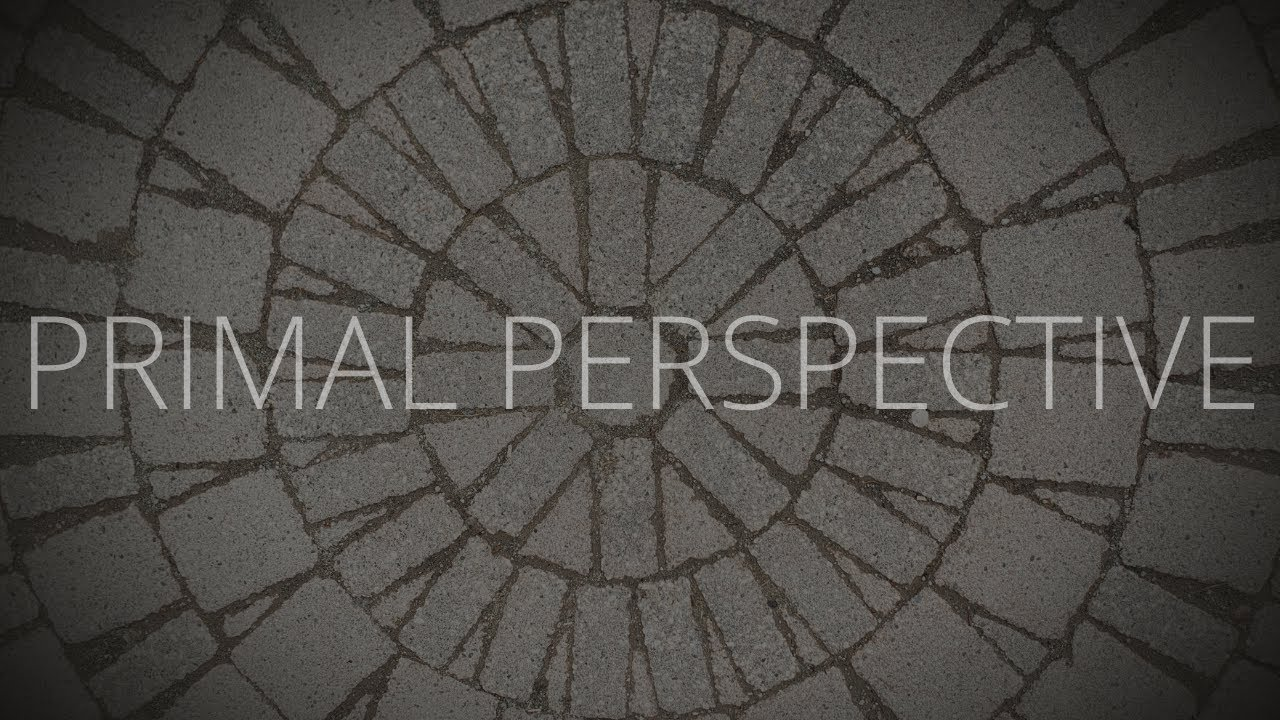 "Primal Perspective episode 5- the ""Tools"" with Nate Summers"
