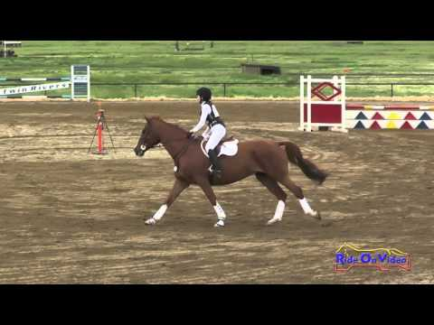 174S Elizabeth Meehan on Hoagy Carmichael JR Novice Show Jumping Twin Rivers Ranch March 2016