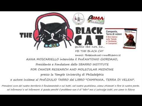 THE BLACK CAT, Anna Moscariello intervista il Prof.Giordano.