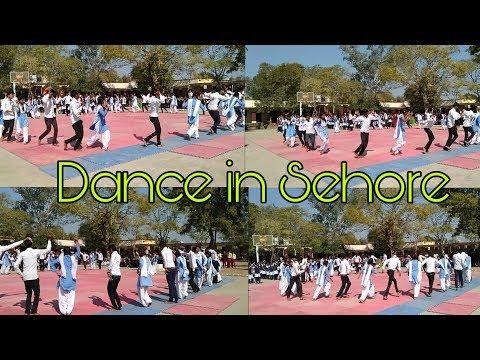 फूल तेरो गजरो तू भूली गई बाजार मा  Phool Tero Gajro Tu Bhuli Gayi  Adiwasi Dance In Sehore School