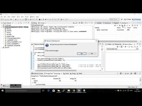 Embedded System Flash memory Erase and program