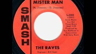 Raves - mister man