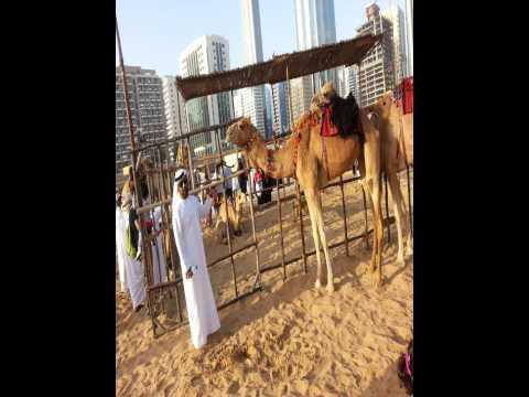 UAE Cultural Diversity