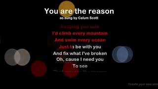 You are the reason - ProTrax Karaoke Demo