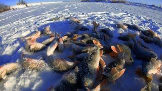 Первый лед 2020 2021 Зимняя рыбалка в Павлодаре Оторвался по окуню на безмотылку
