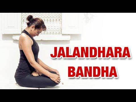 Jalandhara Bandha | Throat Lock Pose | Yoga For Beginners