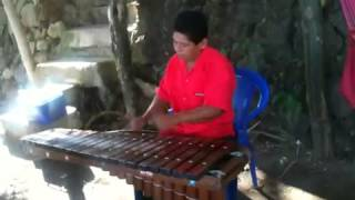 marimba nicaraguense los dos bolillos josé félix palacios