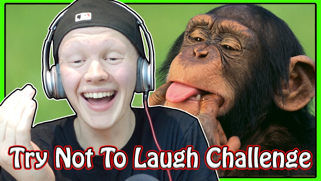 Try Not Laugh People Laughing