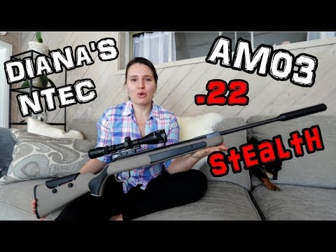 Diana AM03 Stealth N-TEC .22 - FULL REVIEW (RDW)