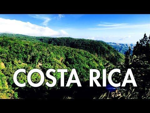 "Costa Rica Monte Verde Cloud Forest ""SCORPIONS GLOW?"""