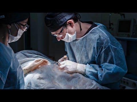 Варикоцеле у мужчин: симптомы, диагностика, лечение, отзывы пациентов