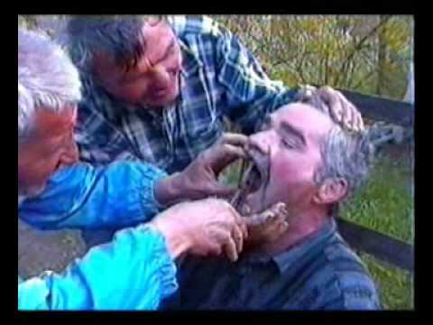 Romanian or Hungarian dentist