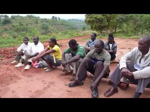 Community Forest Conservation in Malawi