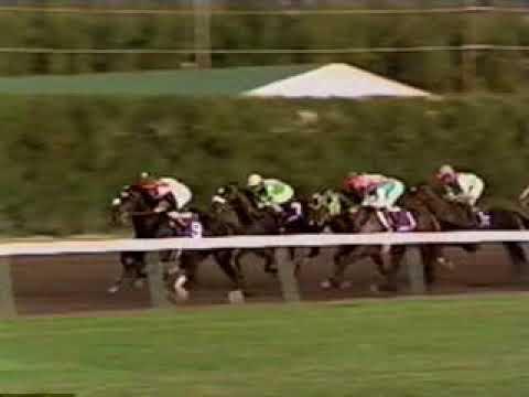 1992年 第9回 ブリーダーズカップ・クラシック - エーピーインディ(A.P.Indy)
