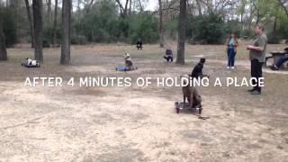 Group Class Houston Dog Training