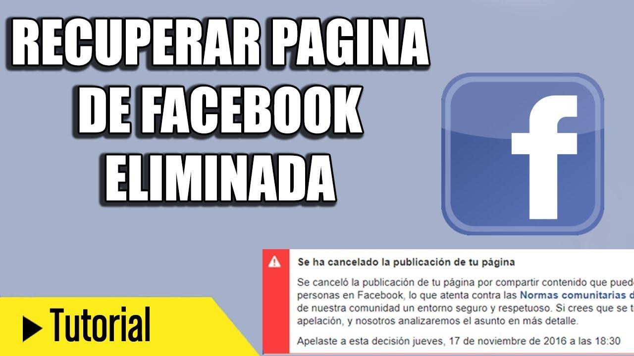 como recuperar el facebook eliminado