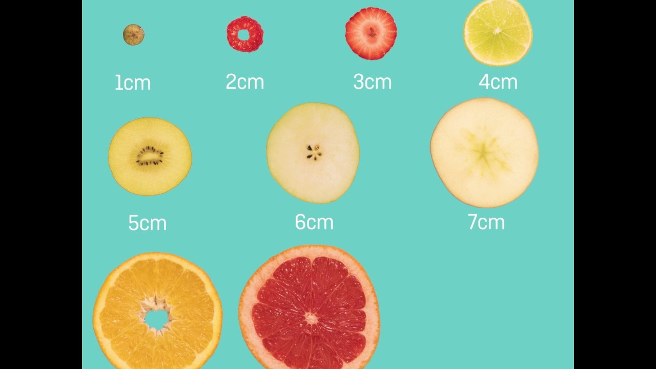 What does cervical dilation really look like?