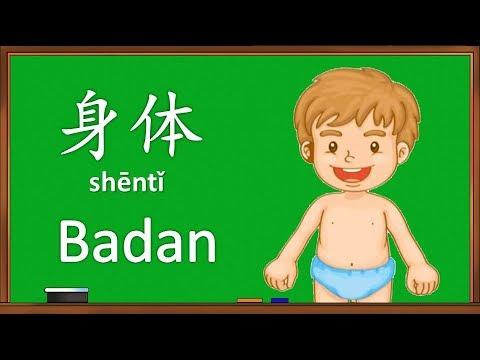 Belajar Nama Anggota Tubuh Dalam Bahasa Mandarin