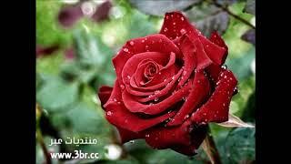 تحميل Mp4 Mp3 اغنيه يا حياة الروح فضل شاكر بدون موس Af25a8