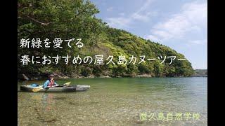 【屋久島カヌーガイドツアー・安房川】新緑を愛でる春におすすめのツアー