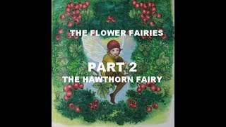 The Flower Fairies My color test picture Part 2