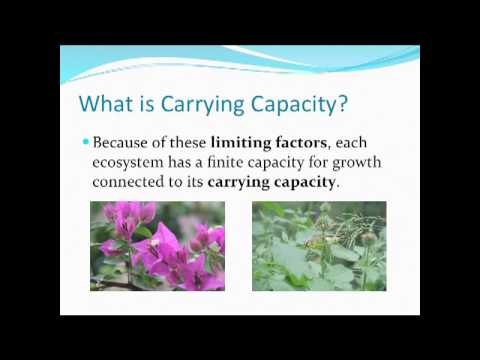 Carrying Capacity Science Definition