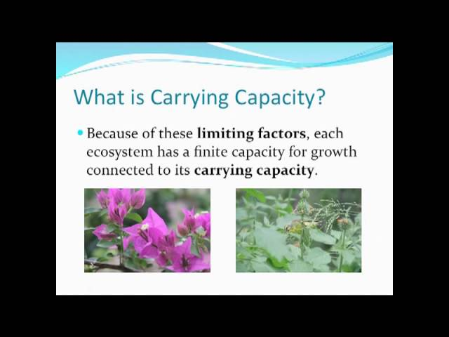 Competition Limiting Factor Carrying Capacity Density Dependent