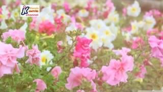 Video Roj hashore Allah amar korona bichar download MP3, 3GP, MP4, WEBM, AVI, FLV Juli 2018