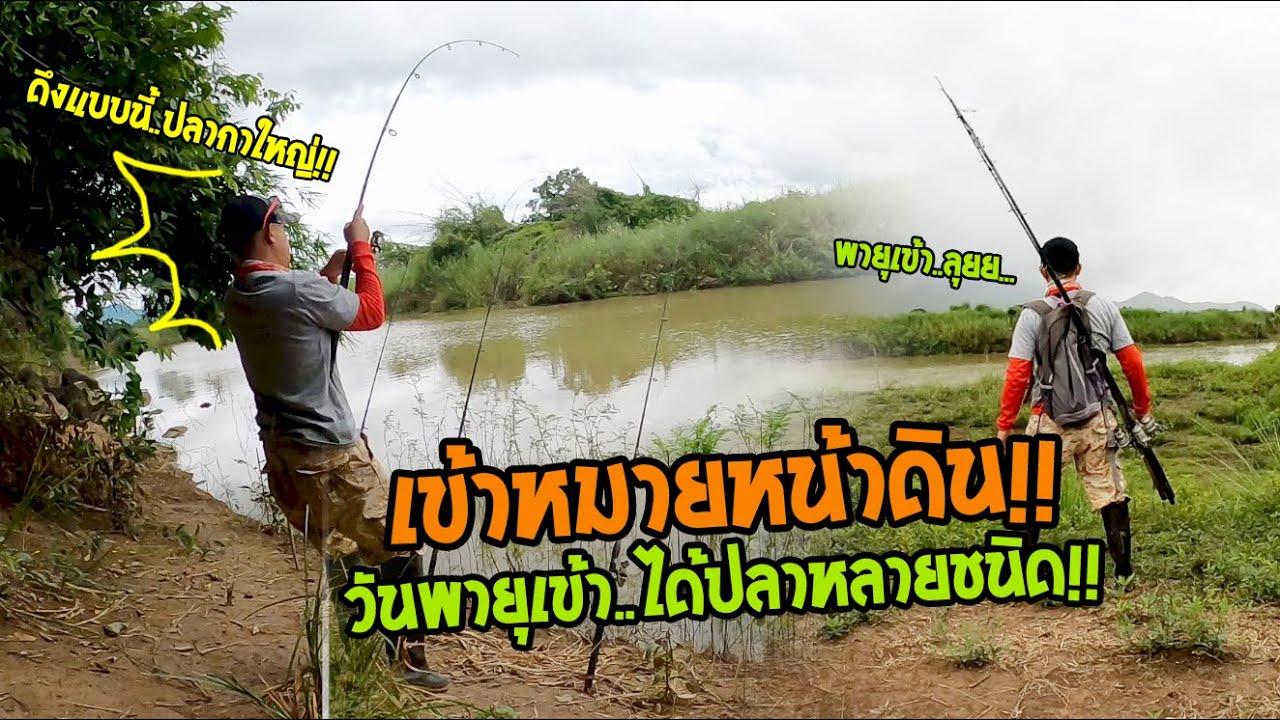 ตกปลาหน้าดินหมายธรรมชาติ เข้าหมายตอนพายุเข้า!! ปลากินหลากหลายชนิด!!