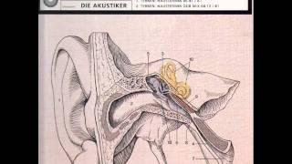 Die Akustiker - Das Ohr (Haustermin Mix)