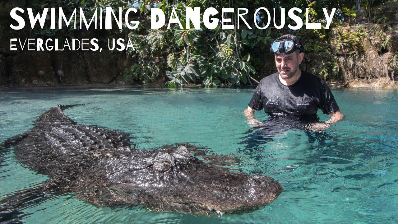 Swimming Dangerously