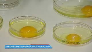Desvende o boato que o Brasil está importando ovos da China