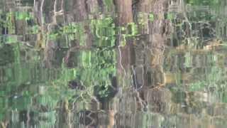 утро на реке снов(река Снов, июнь, музика автора https://www.amazon.com/gp/product/B01HOTMIOK/ref=dm_ws_sp_ps_dp., 2013-06-29T18:38:20.000Z)