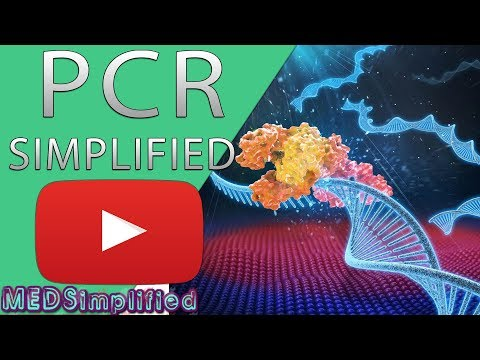 PCR - Polymerase Chain Reaction Simplified
