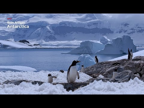 Building on solar success in Antarctica